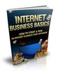 Thumbnail Internet Business Basics With MRR
