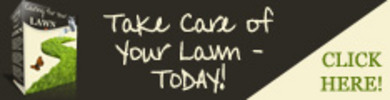 Thumbnail *New Design* Caring-For-Your-Lawn (PLR)