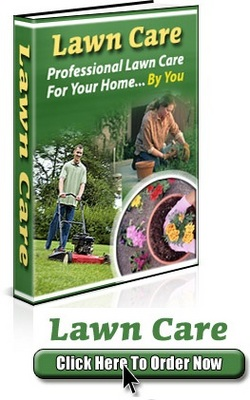 Product picture Lawn Care  Professional Lawn Care For Your Home (PLR)