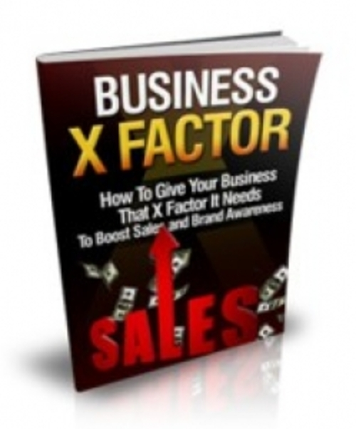 Product picture Business X Factor (MRR)